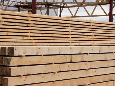 kłody drewniane 4